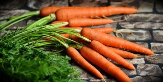 Acne diet - carrot