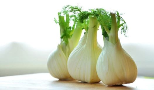 Acne diet - fennel