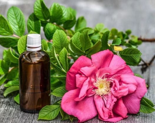 home remedies for acne scars - rose oil